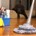 تنظيف منازل العين
